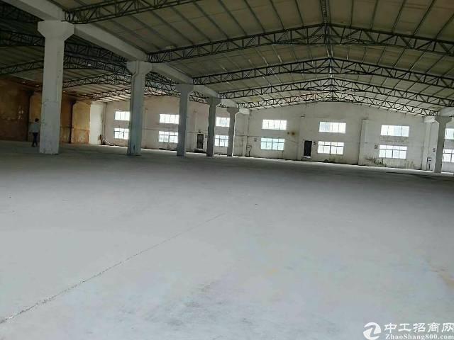 惠州淡水原房东钢构厂房5000平出租