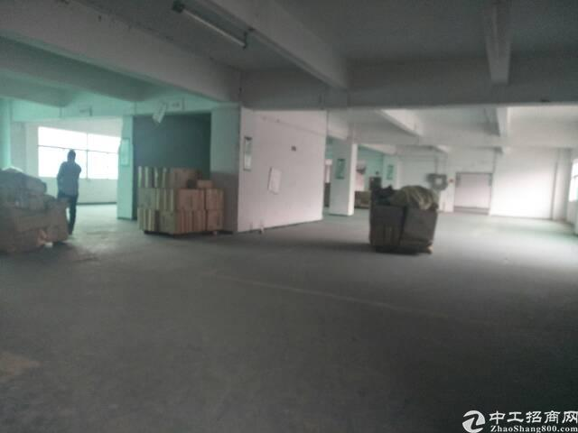 水田新出楼上1100㎡出租两层,可分租