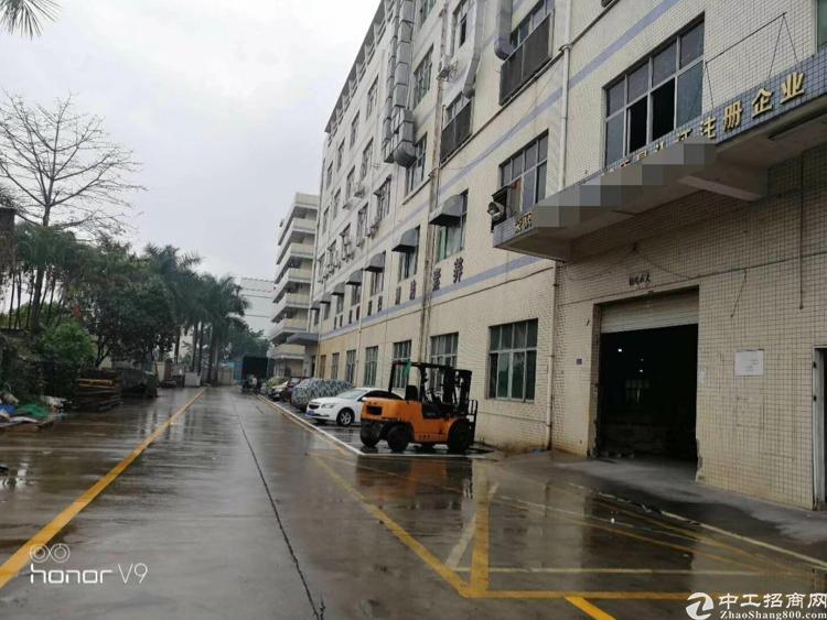 观澜清平高速出口原房东大型园区三层6000平低价出租
