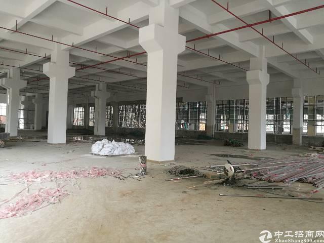 黄江镇靠公明高薪产业园54000平米火爆招租可分租
