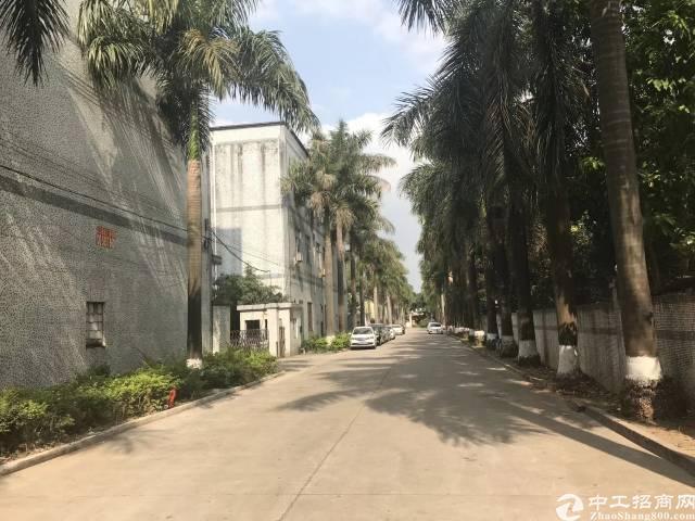 观澜牛湖独院厂房1-3层6000多平方出租