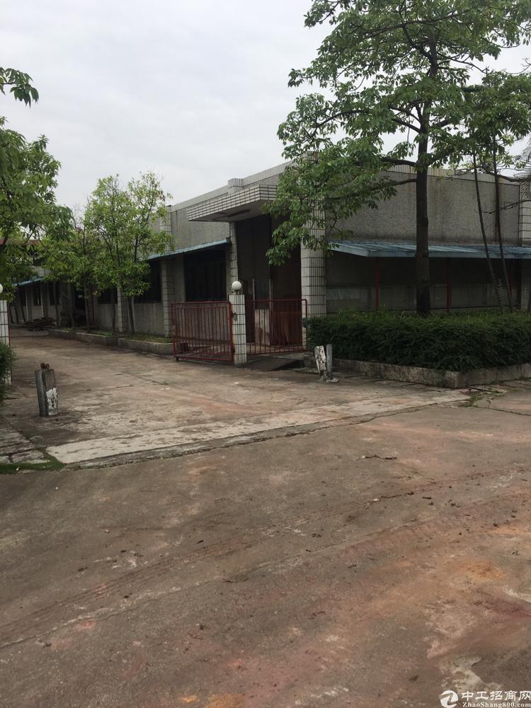 常东路旁新出空地超大单一层厂房