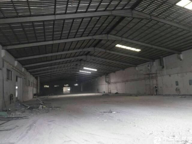 大岭山单一层钢构厂房出租