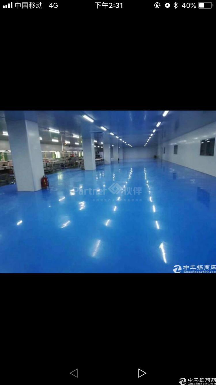 厚街千级无尘车间1500平方 适合 电子 手机钢化玻璃等行业