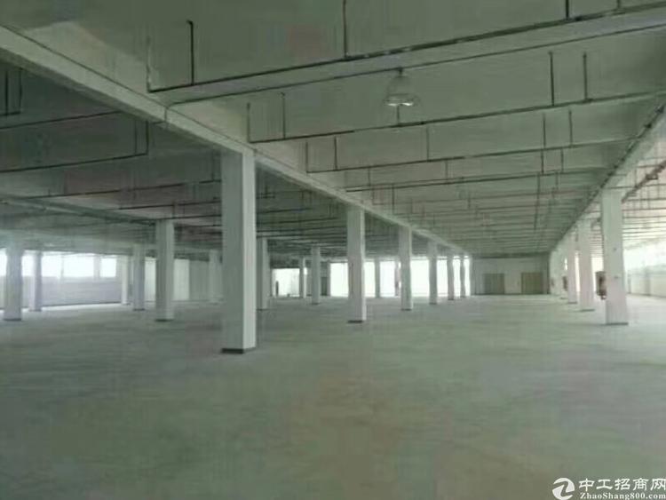 坂田新出一楼3000平米厂房出租