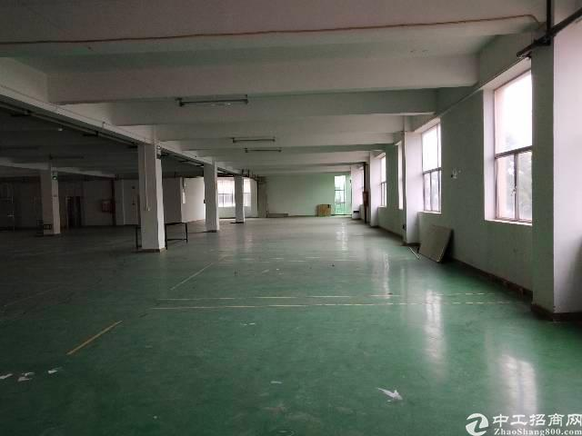 坑梓老坑工业区厂房1700平方招租-图4