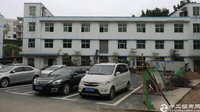 西丽原房东厂房1-3层1800平方招租