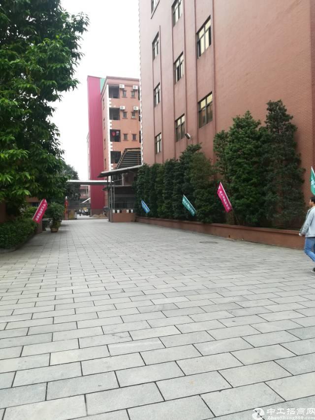 大岭山花园式厂房25000平方厂房出租
