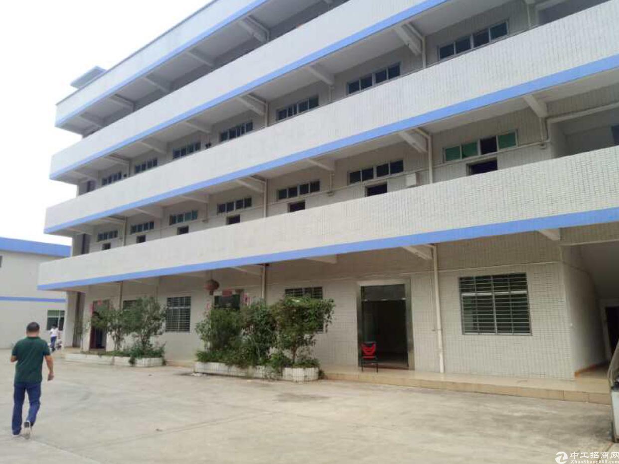 大朗单一层独院厂房九米滴水2568平 办公室。