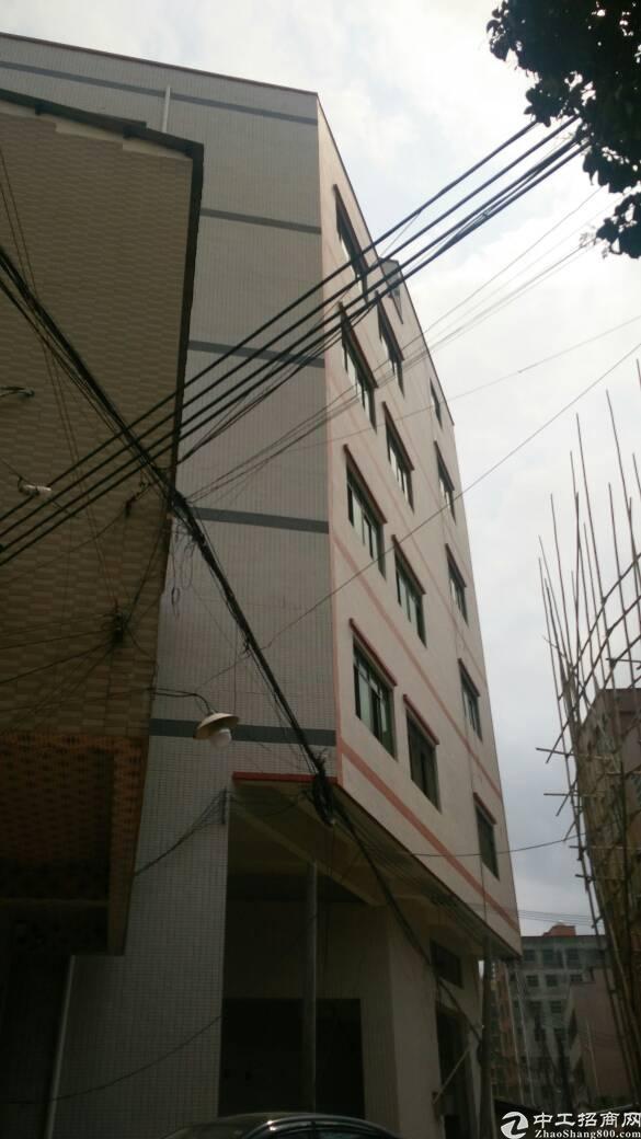 大岭山颜屋全新厂房1―9层单层450平米