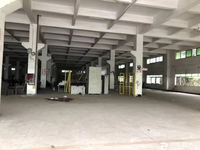 沙井107国道边新出一楼800平米,一楼6米高,有客户火速对