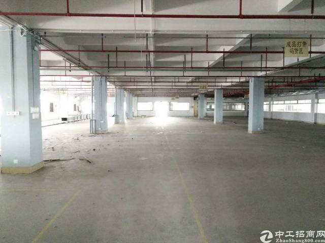 长安厦岗新出独院二楼重工业厂房,位置绝佳,好招工-图2