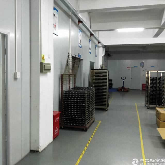 松岗江边工业区新出2楼650平方米带精装修办公室
