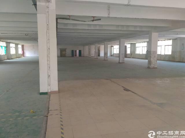 福永和平标准重工业楼上整层2500㎡出租