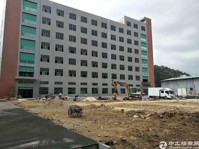 东莞长安涌头新出全新独栋厂房1-7层每层3300平方