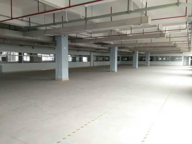 长安厦岗新出独院二楼重工业厂房,位置绝佳,好招工-图3
