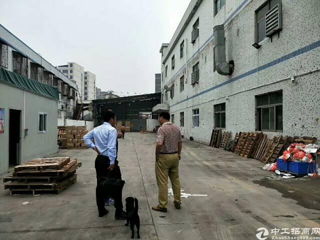南光龙大高速路口边独院3750平方厂房出租