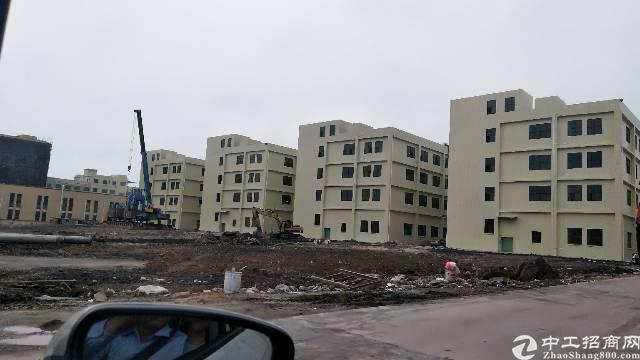陈江镇政府10万平方厂房出租 可以分租