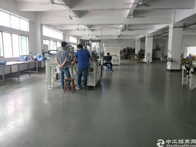长安厦岗1200平方厂房招租、带精装修