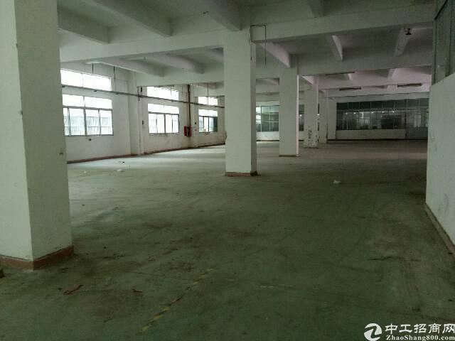 东莞东城新岀800平方厂房