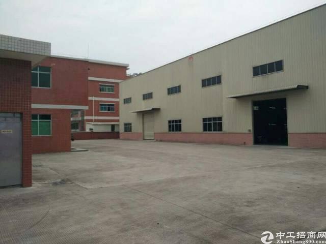 望牛墩路口3000平米单一层独院厂房,宿舍办公1500平米