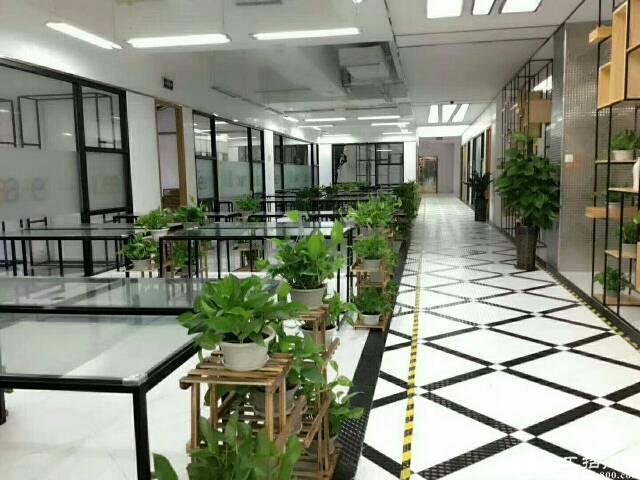龙岗中心城精装修写字楼出租