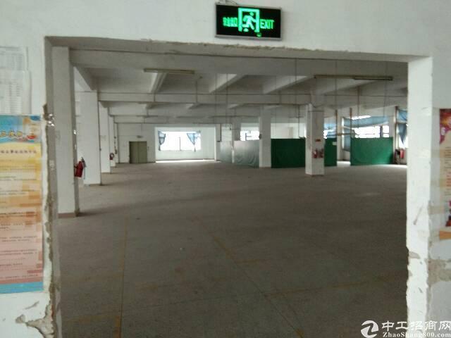 独院工业园区内原实业客分租一楼1350平方