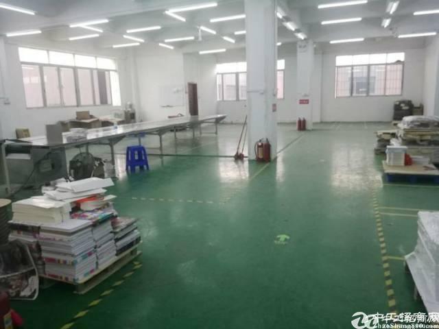 虎门大宁靠长安,精装修厂房,980平米实际面积,合同6年