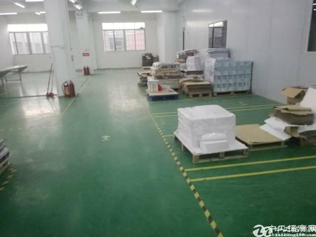 虎门靠长安夏边标准厂房招租1080方租11元电315kva