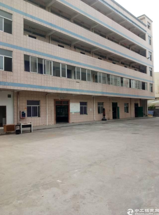 龙岗坪地中心地带独院厂房两栋5000平米出租,任意分租