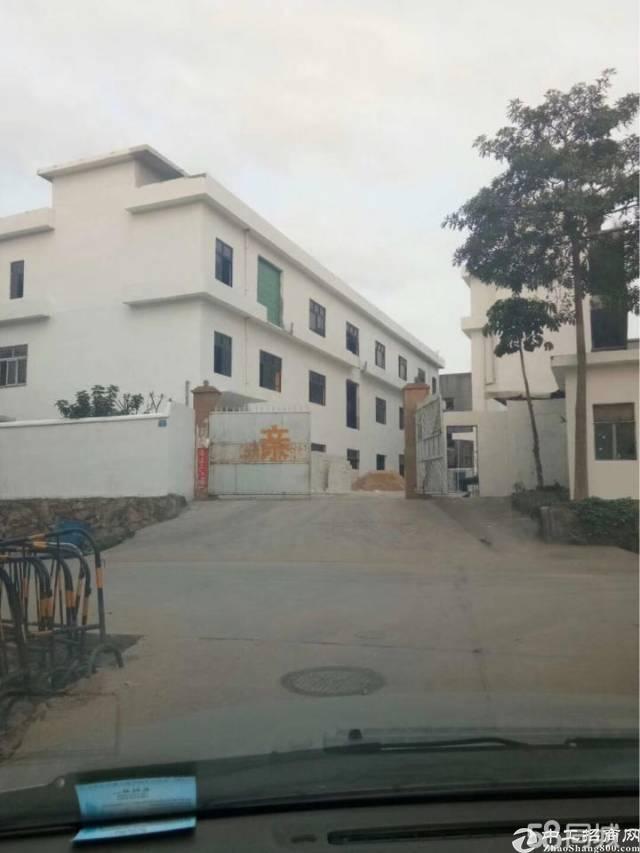 黄江新出独院楼房出租,总面积5000平米