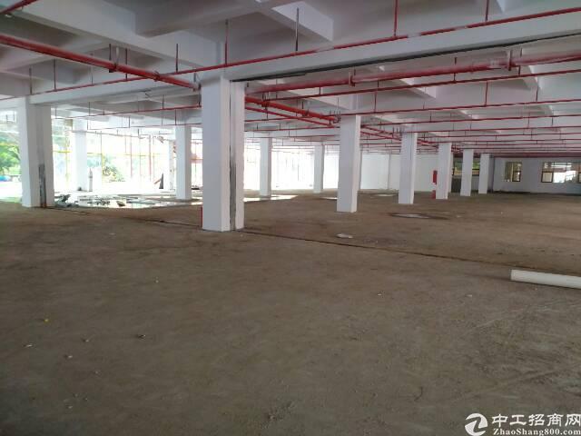 横岗龙岗大道旁边一楼厂房仓库760平1600平出租