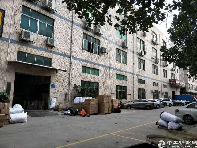 福永新和新出一楼1250平米豪华装修前天适合加工-图2