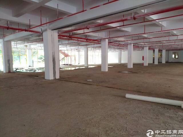 横岗龙岗大道旁边一楼厂房仓库760平1600平出租-图2