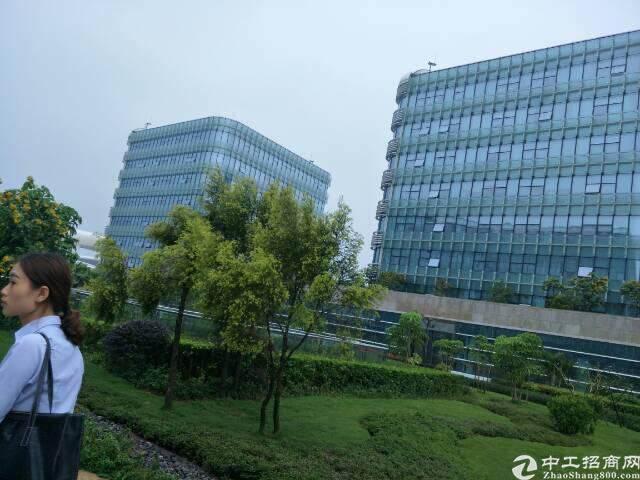 (出租)宝安机场地铁口T3航站楼100平米写字楼75元单价图片4