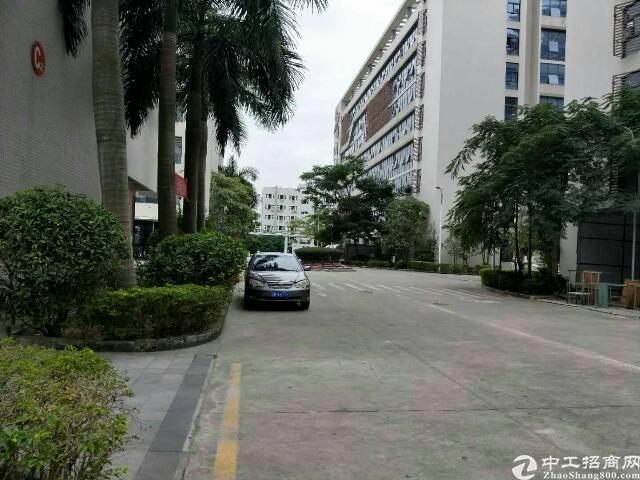 红本厂房,大工业区楼上整层5200平方招租-图5