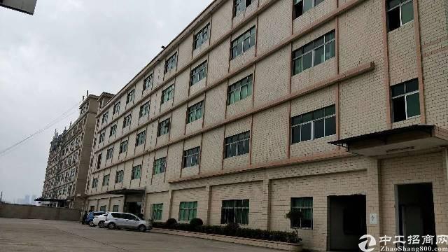 观澜环观南路边工业园新出二楼432平方带精装修
