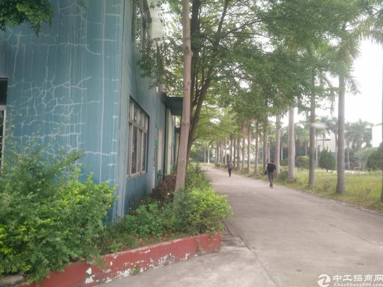 仲恺高新区主干道旁花园式滴水十米厂房招租