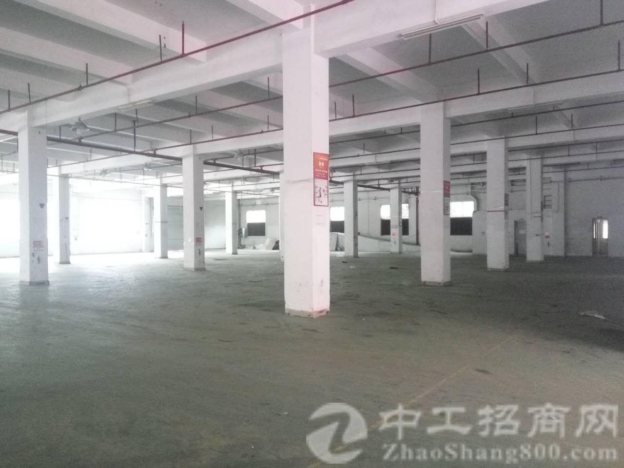 茶山镇全新标准厂房6层10800㎡,单层面积1800㎡,