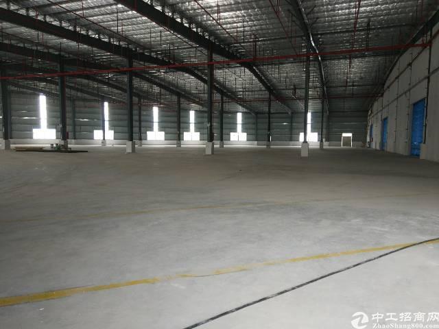 镇隆独院钢构厂房9800平方米滴水9米招租