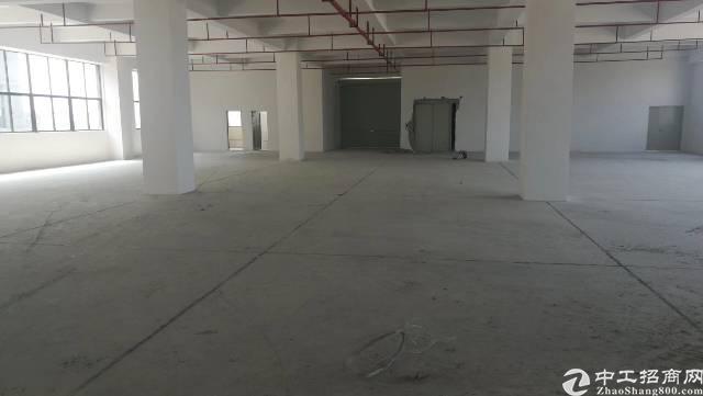 陈江镇新出一楼带牛角标准厂房
