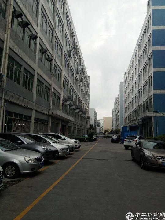 龙岗坪地北通道边6米高一楼厂房2000平米出租