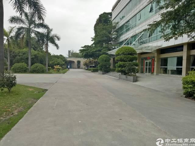 观澜桂花新出楼上单层面积3000平厂房出租