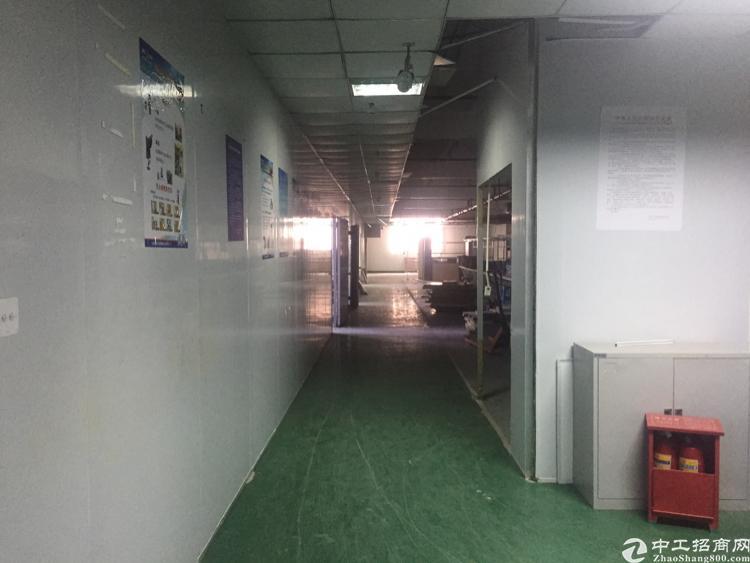 沙井共和带装修厂房出租2000平
