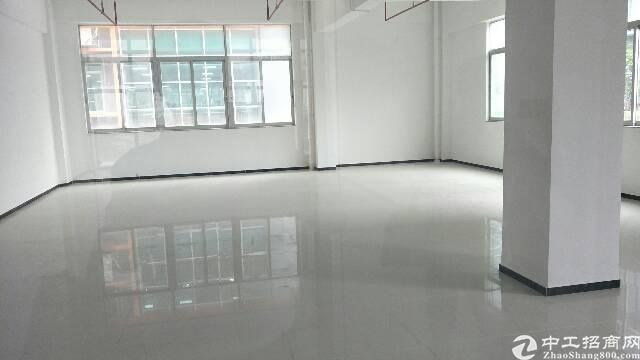 龙岗坪地独栋厂房7500平方出租,带装修-图3