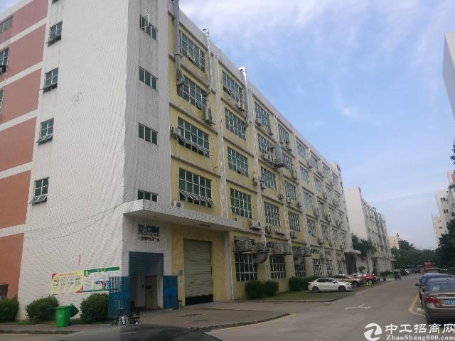 沙井和一沿江高速出口一楼800平方仓库招租