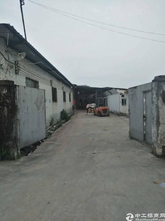 坑梓坪山大道旁200米处独院钢构厂房出租 2100平米