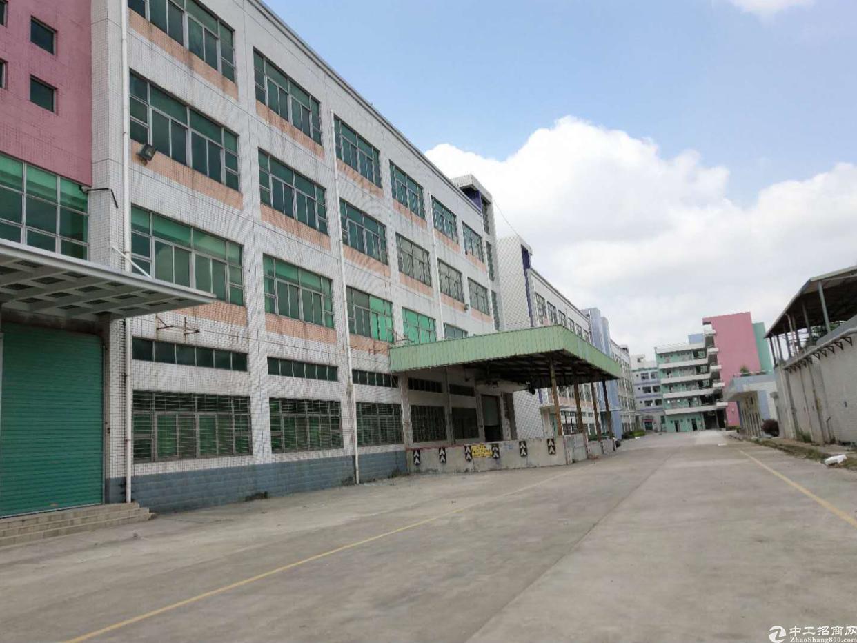 坑梓金沙工业园一楼450平方高5米厂房出租