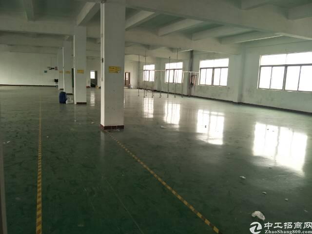 坪山新区坑梓厂房出租-图4