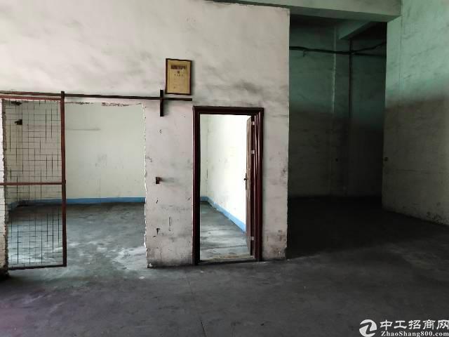 坑梓深山大道周边厂房650平方招租-图3
